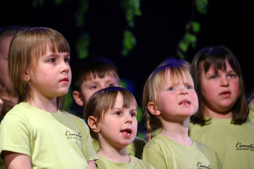 V rámci doprovodného programu pak diváci tleskali i malým zpěvákům z novoborského sboru Camella, kteří originálně propojili známé evergreeny s tradičními českými pohádkami.