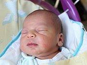 Mamince Martině Giňové z Ploužnice se v neděli 11. února v 18:36 hodin narodil syn Tomáš Giňa. Měřil 50 cm a vážil 3,35 kg.