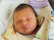 Rodičům Gabriele a Janovi Arnoldovým z České Lípy se ve středu 6. prosince v 9:10 hodin narodil syn Jan Arnold. Měřil 50 cm a vážil 3,48 kg.