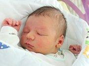 Rodičům Veronice a Michalovi Polákovým z Doks se v pátek 9. června v 15:18 hodin narodil syn Michael Polák. Měřil 52 cm a vážil 3,41 kg.