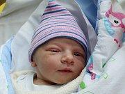 Rodičům Janě Novákové a Pavlu Gargalikovi z Dolní Libchavy se v pondělí 21. srpna ve 2:09 hodin narodil syn Vít Gargalik. Měřil 50 cm a vážil 2,93 kg.