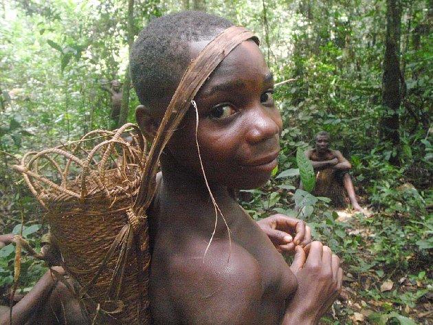 Ve snímku nejlepšího slovenského dokumentaristy Pavola Barabáše Pygmejové – děti džungle se vydáme hluboko do džungle Středoafrické republiky.