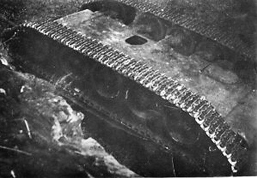 Jeden zruských tanků, který projížděl Žandovem a Horní Policí na západě Českolipska, se 21.srpna ve 4hodiny ráno zřítil zmístního historického mostu.