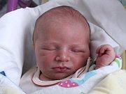 Rodičům Pavlíně a Vladimírovi Pelcovým ze Stráže pod Ralskem se v úterý 10. dubna ve 20:36 hodin narodil syn Tomáš Pelc. Měřil 50 cm a vážil 3,70 kg.