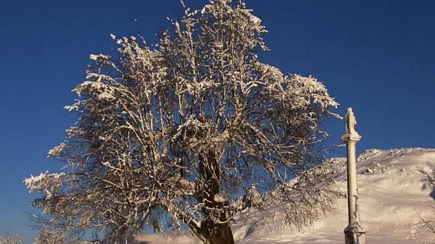 Zimní příroda v okolí Polevska.