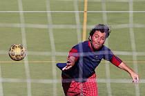 Soutěžilo se v tradičních sedmi míčových disciplínách: fotbalových penaltách, házenkářských sedmičkách, basketových šestkách, čtyřhře stolního tenisu, nohejbalových a volejbalových deblech.