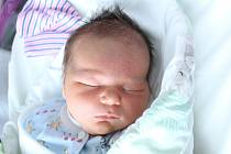 Rodičům Monice a Ladislavovi Voglovým z Rumburku se v úterý 23. června v 16:23 hodin narodil syn Vojtíšek Vogl. Měřil 52 cm a vážil 4,35 kg.
