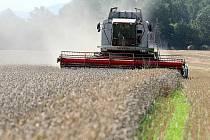Velmi slušných výnosů dosáhli zejména u sklizně jarního ječmene. Toho oseli pouze čtyřicet hektarů , ale výnos byl pětašedesát metráků. Dobře dopadla ale i sklizeň v dalších komoditách, jako je pšenice či hrách.