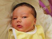 Rodičům Kláře a Jiřímu Pavelkovým z Krásné Lípy se v sobotu 8. července narodila dcera Andělka Pavelka. Měřila 51 cm a vážila 3,95 kg.