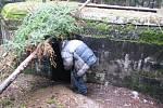 Bezdomovec Míra se před nástupem do vězení skrývá ve vojenském bunkru v lese nedaleko Dubé na Českolipsku.
