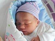 Rodičům Jiřině Staré a Jiřímu Doležalovi z České Lípy se ve středu 7. listopadu ve 22:22 hodin narodila dcera Veronika Doležalová. Měřila 52 cm a vážila 3,95 kg.