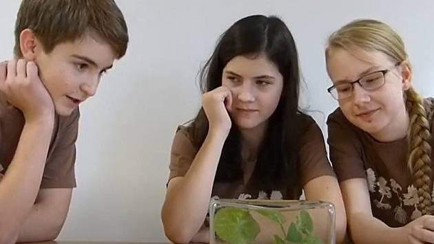 Na prvním místě v kategorii základních škol se umístil tým z Gymnázia Česká Lípa.