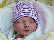 Rodičům Michaele a Antonínovi Davídkovým ze Cvikova se v pondělí 19. března ve 13:12 hodin narodil syn Antonín Davídek. Měřil 51 cm a vážil 3,10 kg.