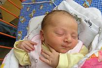 Mamince Marii Oplové z Provodína se 14. března v 03:36 hodin narodila dcera Denisa Oplová. Měřila 49 cm a vážila 3,21 kg. Blahopřejeme.