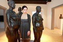 V prvním patře vystavuje Figury výtvarnice Martina Fotrová.