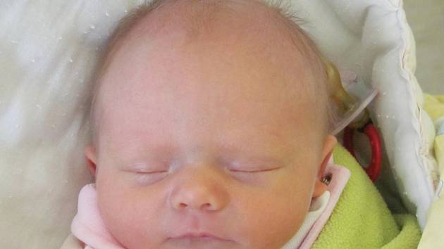 Rodičům Michale Kořínkové a Lukáši Brejtrovi z České Lípy se v pondělí 12. října v 8:12 hodin narodila dcera Nela Kořínková. Měřila 46 cm a vážila 2,68 kg.