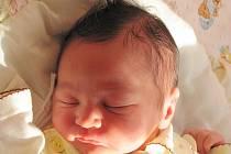 Mamince Michaele Šimůnkové z České Lípy se 29. března ve 12:54 hod. narodila dcera Sára Šimůnková. Měřila 47 cm a vážila 2,81 kg.