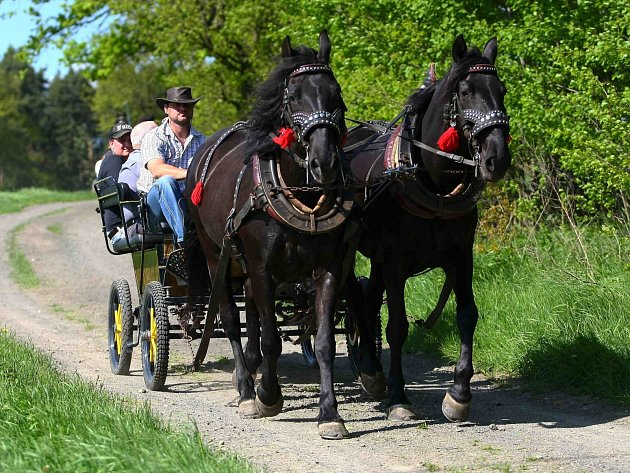 Ve středu slavnostně otevřeli ve Velkém Grunově úplně první jezdecké stezky vLibereckém kraji.