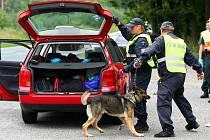 Na drogy a alkohol u návštěvníků festivalu se zaměřují každoroční kontroly policistů a celníků