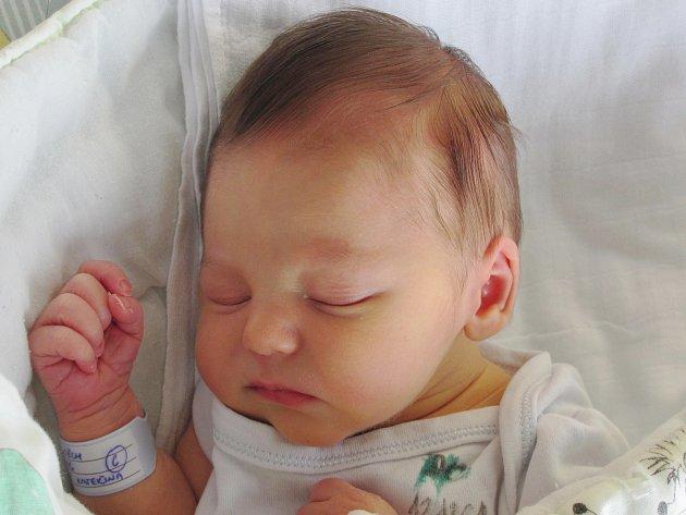 Rodičům Kateřině Swobodové a Milanu Nitkovi z Radvance se v úterý 1. prosince ve 21:38 hodin narodil syn Vojtěch Nitka. Měřil 48 cm a vážil 2,97 kg.