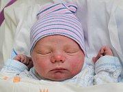Rodičům Kateřině a Adolfovi Rozmanovým z České Lípy se v neděli 21. ledna v 17:21 hodin narodil syn Josef Rozman. Měřil 50 cm a vážil 3,74 kg. Doma na něj čekají sestřička Lenka a bráška Adam.