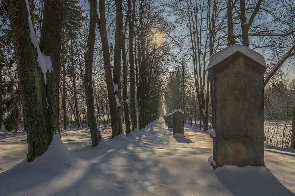 Křížová cesta ve Cvikově.