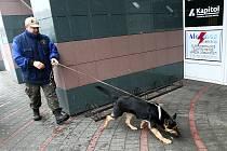 Výbušniny speciálně vycvičený pes neobjevil.