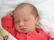 Mamince Žanetě Turkové z České Lípy se ve středu 18. dubna ve 4:07 hodin narodila dcera Žaneta Turková. Měřila 47 cm a vážila 3 kg.