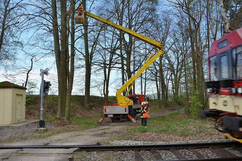 Železniční hasiči z Liberce pokáceli strom ve Skalici. Ohrožoval vlaky.