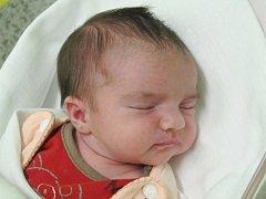 Mamince Kateřině Koudelkové z České Lípy se v pondělí 3. února v 13:32 hodin narodila dcera Eliška Koudelková. Měřila 49 cm a vážila 3,55 kg.