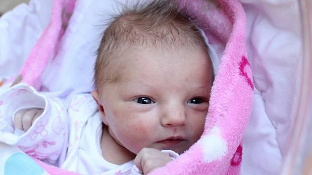 Rodičům Elišce Engové a Filipu Hanzlíkovi ze Žandova se ve čtvrtek 12. prosince v 11:23 hodin narodila dcera Sofie Hanzlíková. Měřila 49 cm a vážila 2,97 kg.