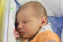 Rodičům Zuzaně Veselé a Jiřímu Fiřtovi ze Zbyn se v pondělí 24. prosince v 9:44 hodin narodila dcera Adéla Fiřtová. Měřila 50 cm a vážila 3,43 kg.