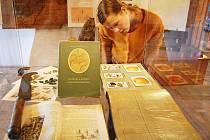 Na jakém ovoci si pochutnávali předci na Českolipsku, přibližuje nová výstava na Vísecké rychtě v Kravařích.