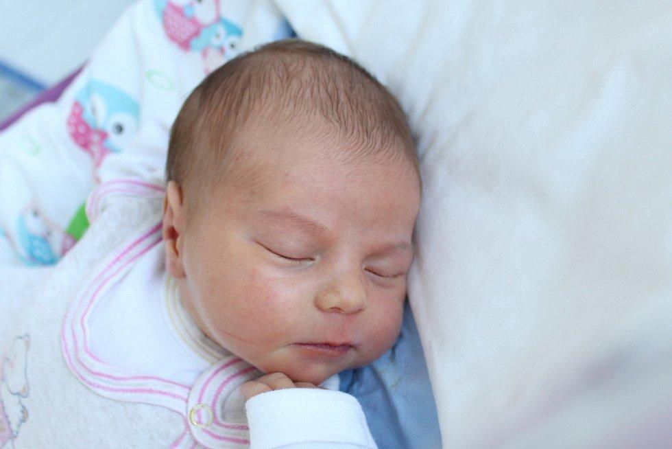 Rodičům Anně a Janovi Kuzněcovovým z České Lípy se v úterý 27. srpna v 18:03 hodin narodila dcera Ella Kuzněcov. Měřila 51 cm a vážila 3,28 kg.