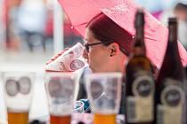 Pivní slavnosti.
