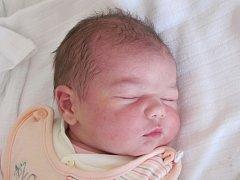Mamince Adéle Slámové z České Lípy se v pondělí 24. února ve 12:27 hodin narodila dcera Tereza Slámová. Měřila 50 cm a vážila 3,64 kg.