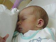 Mamince Marcele Šerfové z České Lípy se v neděli 8. října narodil syn Jiří Šerf. Měřil 50 cm a vážil 3,23 kg.