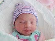 Rodičům Markétě Navrátilové a Liboru Šuráňovi z České Lípy se v pondělí 26. listopadu ve 14:44 hodin narodila dcera Sofie Navrátilová. Měřila 48 cm a vážila 2,87 kg.