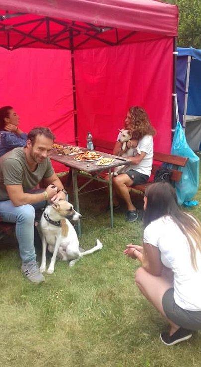 Festival podpořil útulek. Na snímku Gump - pes, který naučil lidi žít.
