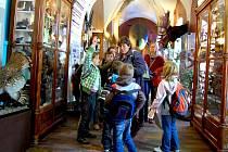 V muzeu se na Den Země pohybovalo na tisíc dětí. Toho využil i suverénní pachatel krádeží, který se vandalským a destruktivním způsobem podepsal na expozicích.