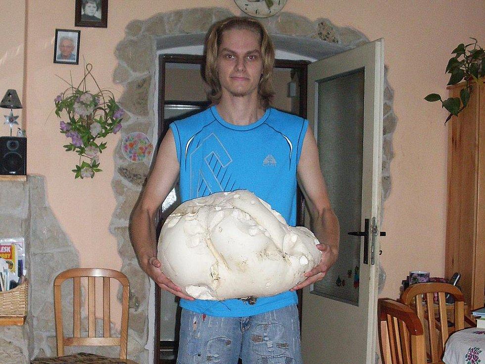 Tuto pýchavku našel můj syn Štěpán ve Stvolínkách. Vážila 7 kg.