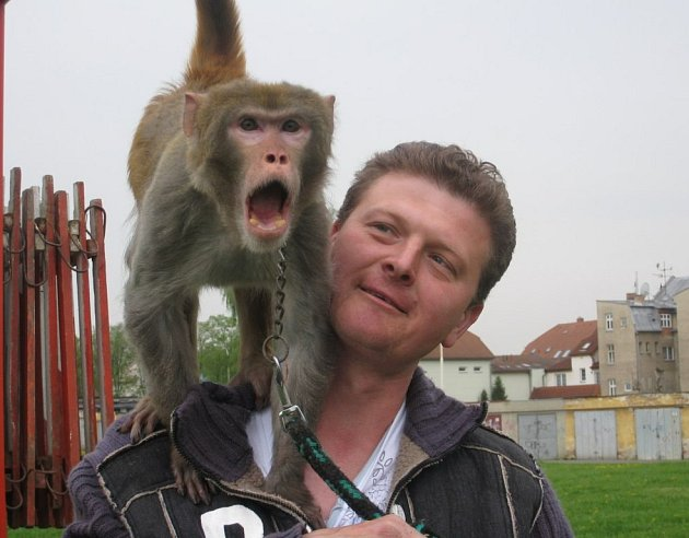 Ludvík Berousek a jeden z účastníků opičí show.