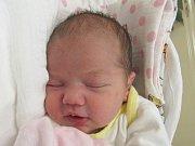 Mamince Mileně Šikelové ze Cvikova se v neděli 26. listopadu v liberecké porodnici narodila dcera Milena Samková. Měřila 49 cm a vážila 3,40 kg.