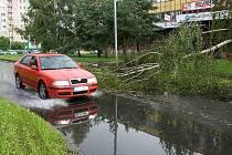 Blesková bouřka za sebou zanechala jen v České Lípě řadu popadaných stromů a převrácené kontejnery.