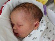 Rodičům Lucii Tiché a Jiřímu Řezníčkovi z Doks se v úterý 14. února v 9:24 hodin narodila dcera Lucie Viktorie Řezníčková. Vážila 4,37 kg.