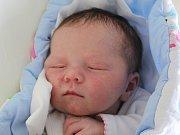 Rodičům Martině a Martinovi Šveňhovým ze Skalky u Blíževedel se v neděli 10. prosince ve 12:31 hodin narodila dcera Deniska Šveňhová. Měřila 52 cm a vážila 3,70 kg.