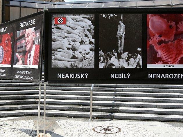Putovní výstavu šestnácti informačních panelů pořádá občanské sdružení Stop genocidě. Bojuje hlavně proti umělým potratům. Kampaň už zavítala do řady měst na severu Čech, snímek je z Litoměřic.