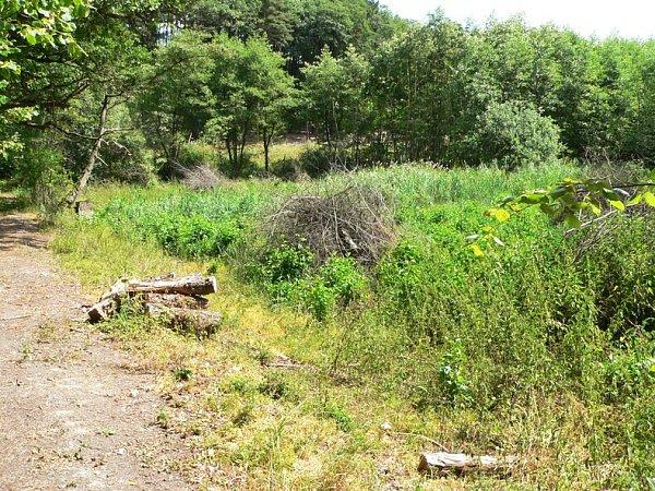 Bezmála čtyři miliony korun půjdou do obnovy přírodních lesních nádrží Lutovník a Knížecí vRalsku.