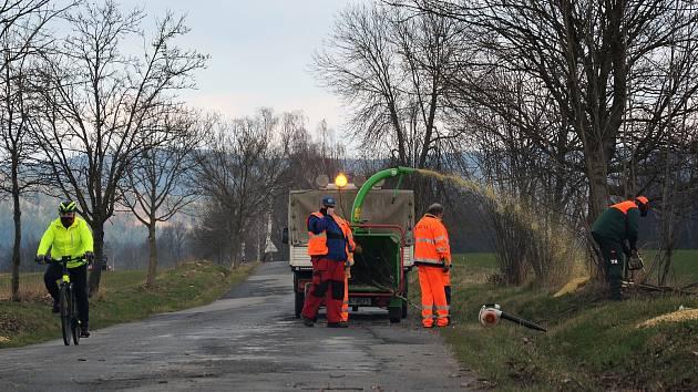 Pozůstatky aleje u silnice z Manušic do Skalice u České Lípy prořezávali cestáři společnosti Silnice LK.