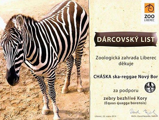 Novoborská formace Cháska podpořila život zebry bezhřívé z liberecké zoo.